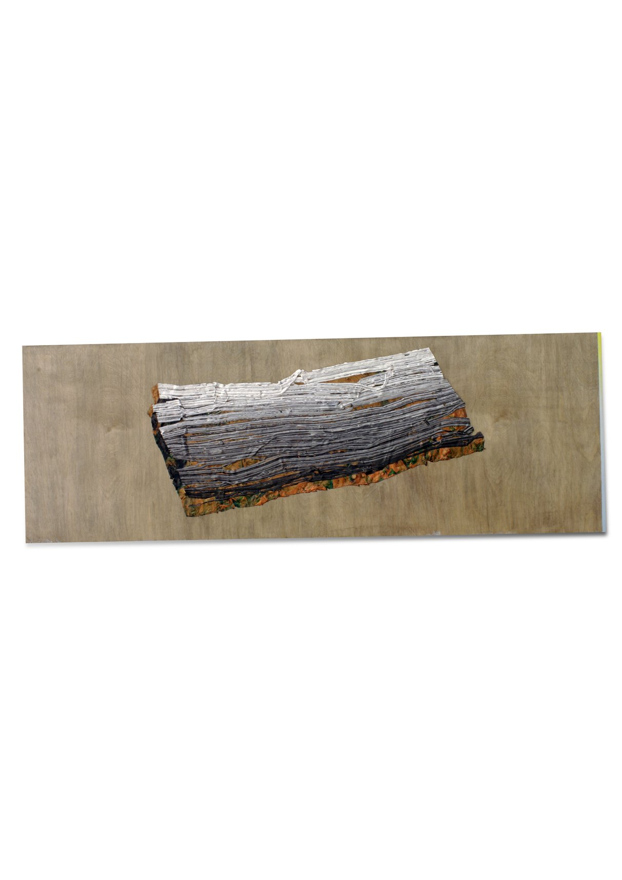 Bark ; 2021, 40x110cm , Glup, shellac spray on birch